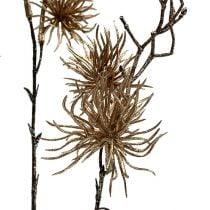 Noitapähkinä kulta kimalluksella 50cm