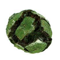 Sypressi käpyjä 3cm vihreä 500g