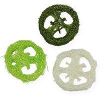 Luffa-viipaleet valikoituja Vihreä, valkoinen 5-7,5cm 24kpl