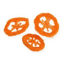 Luffa viipaleet oranssia 25kpl