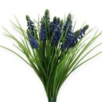 Rypäleen hyasintit 28cm - 30cm sininen 15kpl