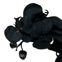 Koristeellinen orkidea Musta 54cm