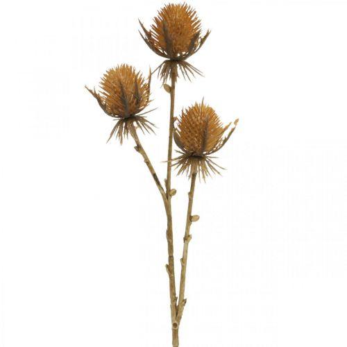 Ohdakkeen oksa ruskea tekokasvi syksyn koristelu 38cm