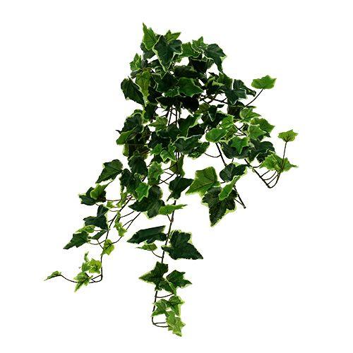 Ivy-ripustin valkoinen-vihreä 70cm