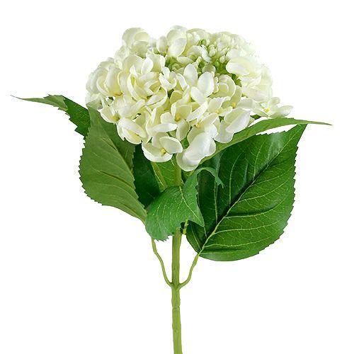 Hortensia 60cm Valkoinen