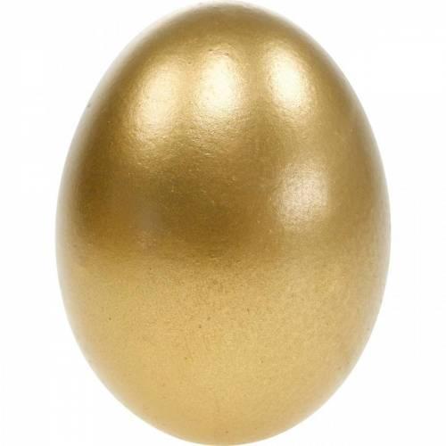 Kananmunat puhallettu ulos munat pääsiäisen koristelu eri värejä 10kpl 10kpl