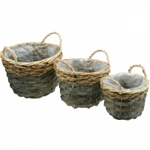 Kasvikori, kori istutukseen, kukkakori pyöreä luonto, harmaa Ø29/23.5/18cm 3 kpl setti