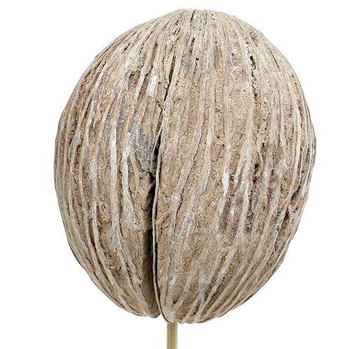 Mintolla pallo tikulla mix valkoinen pesty 6kpl