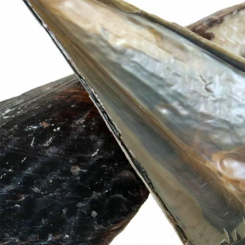 Kynänkuoret mustat 24 - 30cm 1kg