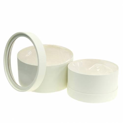 Kukkalaatikko Pyöreä pahvi Cream Ø15,5/19cm 2 kpl sarja