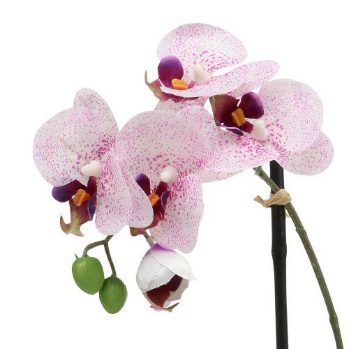 Keinotekoinen Phalaenopsis violetti-valkoinen kulhossa H38cm