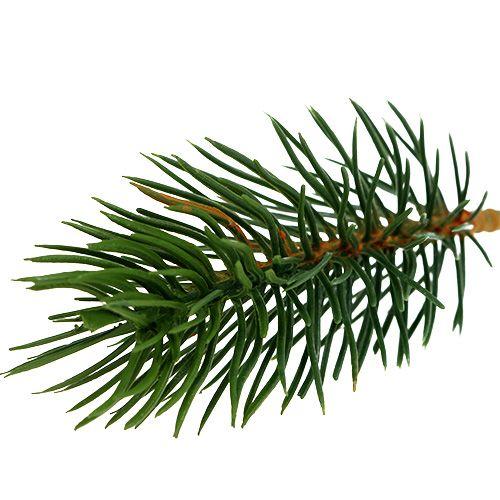 Kuusen kärjet vihreä 10cm 36kpl