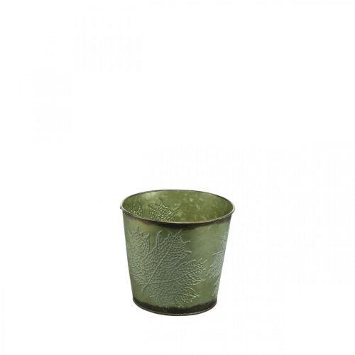 Kasviastia lehtien koristeella, Metalliastia syksylle, Kasviämpäri vihreä Ø10cm H10cm